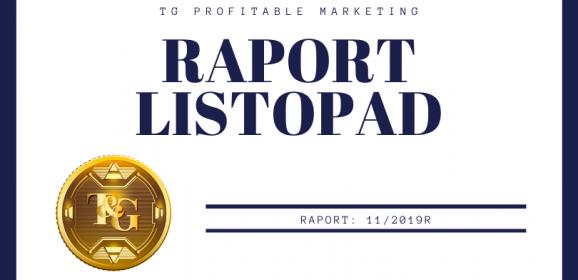 Raport finansowy – listopad 2019